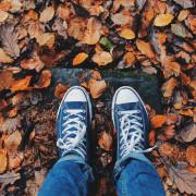 Die Verkehrssicherungspflicht und Räumpflicht im Herbst - Mietrecht Ratgeber