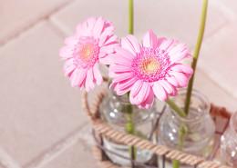 Blumen und Fahhrräder im Hausflur - was ist erlaubt und wo sind die Grenzen?